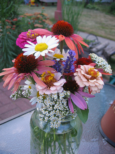 Late Summer Flowers | Be Exquisite